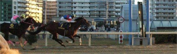 20051223_kawasaki2