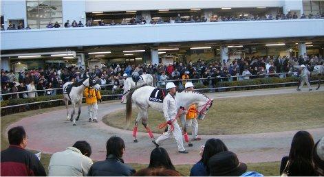 20051223_kawasaki5