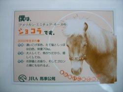 20061104_2_1