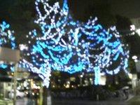 20061124_1