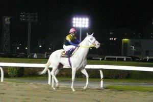 20081209_1