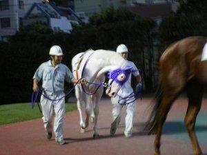 20081218_2