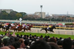 20091129_7