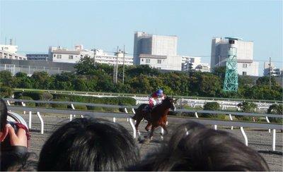 20101103_9