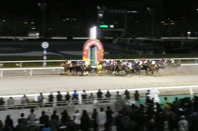 20101110_4