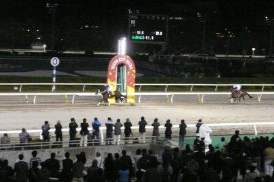 20101110_5