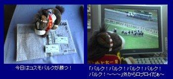 20041128_JC_1.jpg