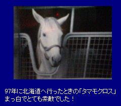 20041207_TC.jpg